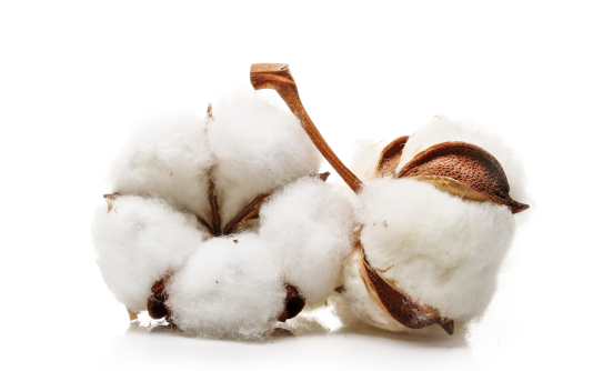 productos-higiene-intima-algodon-natural